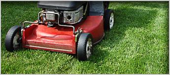 Lawn Mower Repair Key Duplication Windsor On